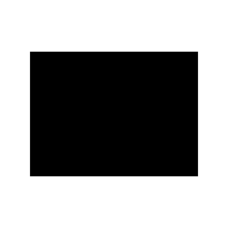 وب کاستر